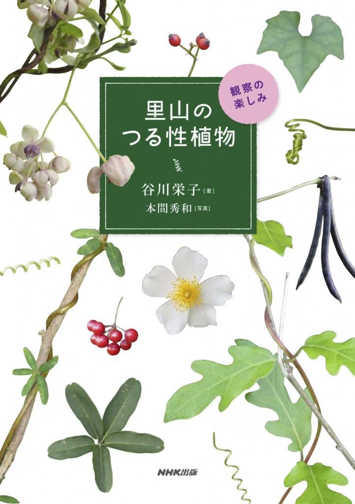 つる性植物_hyou1_0511